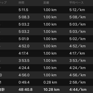 ジョグ 10km+ws×1(ナイキ オデッセイリアクト)