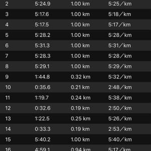 ジョグ 10km+ws×3(ナイキ エアズームペガサス34)
