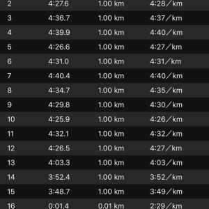 ジョグ 15km(ナイキ ズームフライ)
