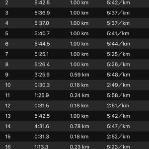 ジョグ 10km+ws×3(ナイキ オデッセイリアクト)
