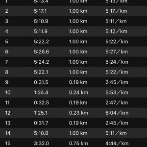 ジョグ10km+ws×3(ナイキ エアズームペガサス34)