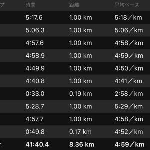 ジョグ 8km+ws×1(ナイキ エアズームペガサス34)