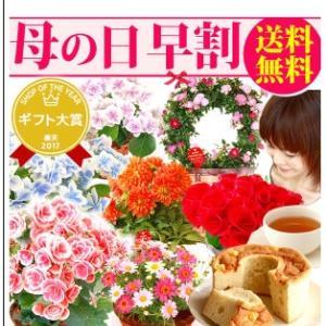 母の日の贈り物 選べるお花 絶品スイーツ