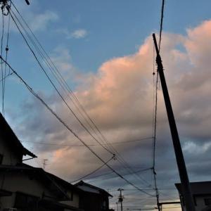 午前中三津整形。夕方、近隣散歩。10851歩。