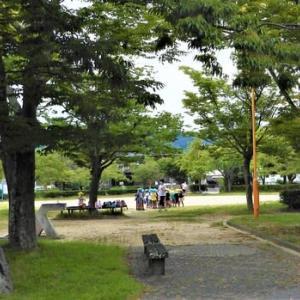 遅めの昼食後三津一周。雨には遭わず、涼しく快適な散歩が出来た。8786歩。