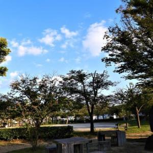 夕方、三津半周快適散歩。5547歩。