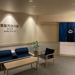ホテル祖谷温泉(2)~2021年6月ニッポン高度紙工業総会旅行記その4