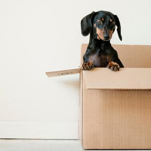 人間関係がうまくいく「箱から脱出する方法」