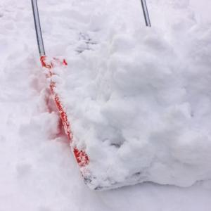 資産型ブログを続けていたおかげで雪かきが楽に出来た話