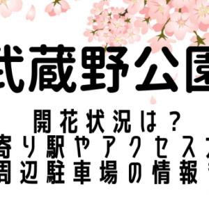武蔵野公園の桜2021の開花状況は?最寄り駅やアクセス方法は?周辺駐車場の情報も
