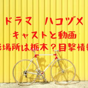ドラマ戸田恵梨香×永野芽郁ハコヅメのロケ地・撮影場所は栃木?目撃情報も