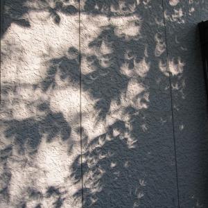 山響ライブ配信と部分日食