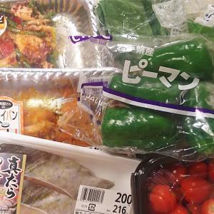 【食材】買った食材と使う予定(手のかからない主菜)