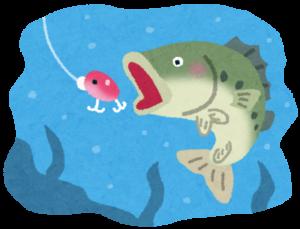 釣りたての魚が美味しいって実は嘘?【食品科学】