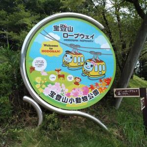 【宝登山】埼玉県長瀞町|子連れ山登り~7歳4歳も楽しい♪