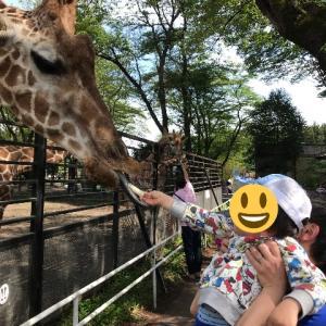 (お出かけ)宇都宮動物園に行ってきました!【栃木県】