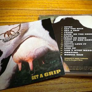 1993年『ゲット・ア・グリップ』GET A GRIP / エアロスミス(Aerosmith)