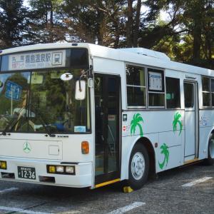 鹿児島交通(元西武バス) 1236号車