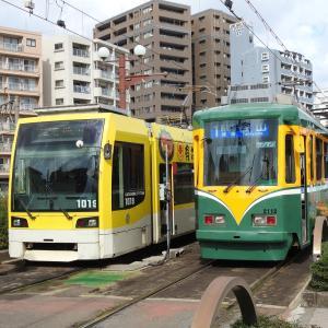 鹿児島市電1000形 1019号車(有村屋ラッピング車両)&2110形 2112号車