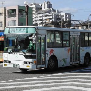 鹿児島交通 1065号車