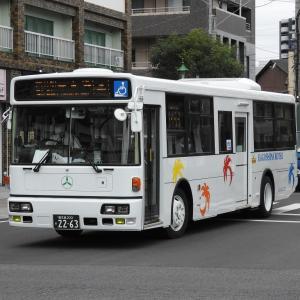 鹿児島交通(元東急バス) 2263号車