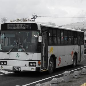 鹿児島交通(元東武バス) 963号車