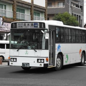 鹿児島交通(元東武バス) 965号車