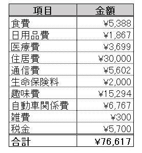 支出(2020.06)