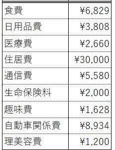 支出(2020.07)