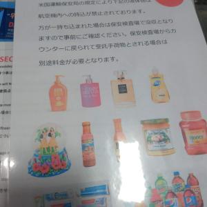 【2月のHawaii旅行記65】4日目 歯磨き粉は持ち出し禁止?!