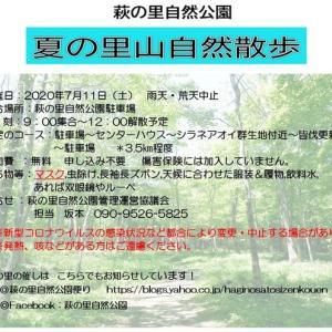 萩の里自然公園  夏の里山自然散歩