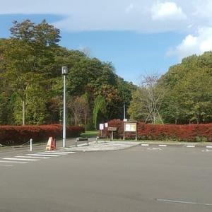 立入禁止解除-萩の里自然公園~そろそろ紅葉~