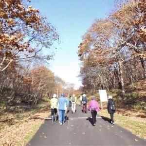 ポールを使って晩秋の里山を歩こう  萩の里自然公園