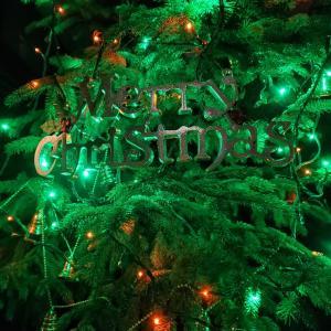 ちょっとだけイルミネーション&クリスマスの飾り。