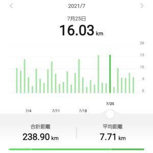 7月のウォーキング&ランニングの総距離(238.90km)