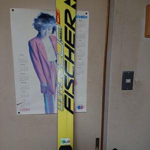 ヤフオクでスキーをポチってしまいました
