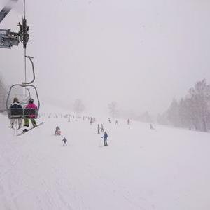 スキー場の多い市町村、長野県適当に…