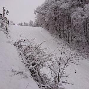 新雪のスキー場はお客さんも結構いましたが