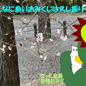 人生初名古屋は学会出張3-熱田神宮で大吉の神籤を引く-(河童日本紀行)