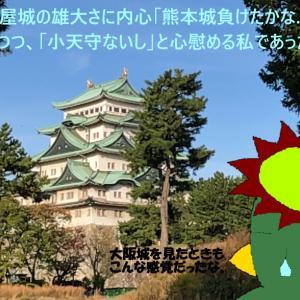 人生初名古屋は学会出張5-名古屋城は天守閣を仰ぐのみ-(河童日本紀行)