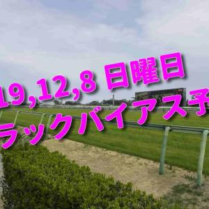 2019,12,8 日曜日 トラックバイアス予想 (中山競馬場、阪神競馬場、中京競馬場)