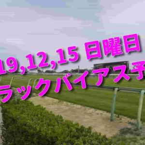 2019,12,15 日曜日 トラックバイアス予想 (中山競馬場、阪神競馬場、中京競馬場)