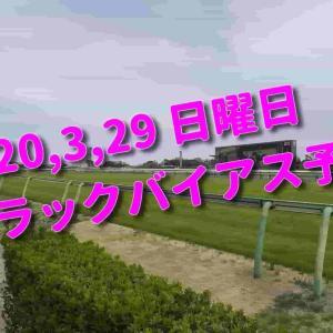 2020,3,29 日曜日 トラックバイアス予想 (中山競馬場、阪神競馬場、中京競馬場)