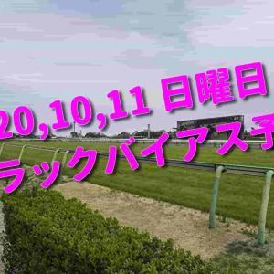 2020,10,11 日曜日 トラックバイアス予想 (東京競馬場、京都競馬場、新潟競馬場)