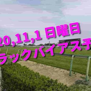 2020,11,1 日曜日 トラックバイアス予想 (東京競馬場、京都競馬場、福島競馬場)