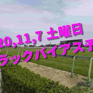 2020,11,7 土曜日 トラックバイアス予想 (東京競馬場、阪神競馬場、福島競馬場)