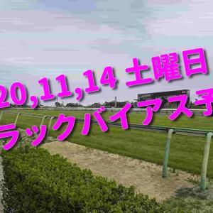 2020,11,14 土曜日 トラックバイアス予想 (東京競馬場、阪神競馬場、福島競馬場)