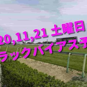 2020,11,21 土曜日 トラックバイアス予想 (東京競馬場、阪神競馬場)