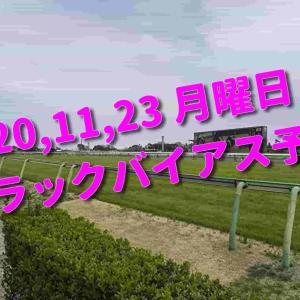 2020,11,23 月曜日 トラックバイアス予想 (東京競馬場、阪神競馬場)