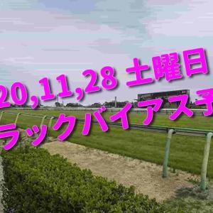 2020,11,28 土曜日 トラックバイアス予想 (東京競馬場、阪神競馬場)